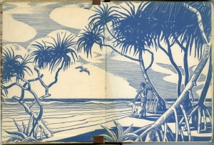 Call it Courage, 1941.  Endpapers illustrated by Armstrong Sperry.